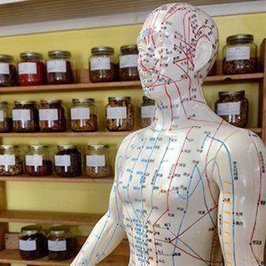acupunctuur punten ana paula silva natuurgeneeskunde en acupunctuur