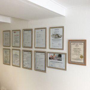 certificaten en diploma's ana paula silva natuurgeneeskunde en acupunctuur